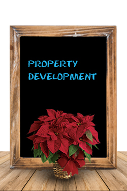Property Development Graphic